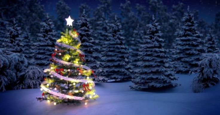 xmas-travel-tree.jpg.image.784.410