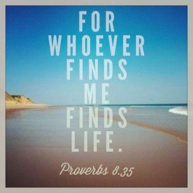 proverbs-8